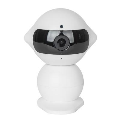 IP камера Secure Alien